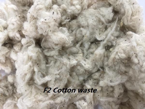 Bông BTB2 - 100% Cotton